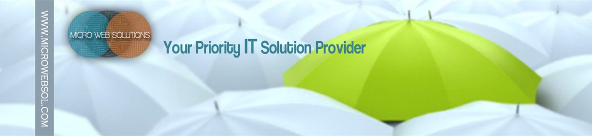 Micro Web Solution, Islamabad, Pakistan